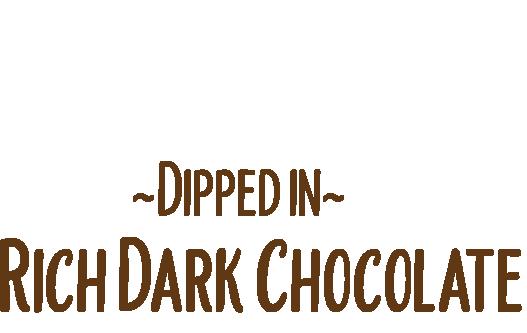 mint-logo2@4x